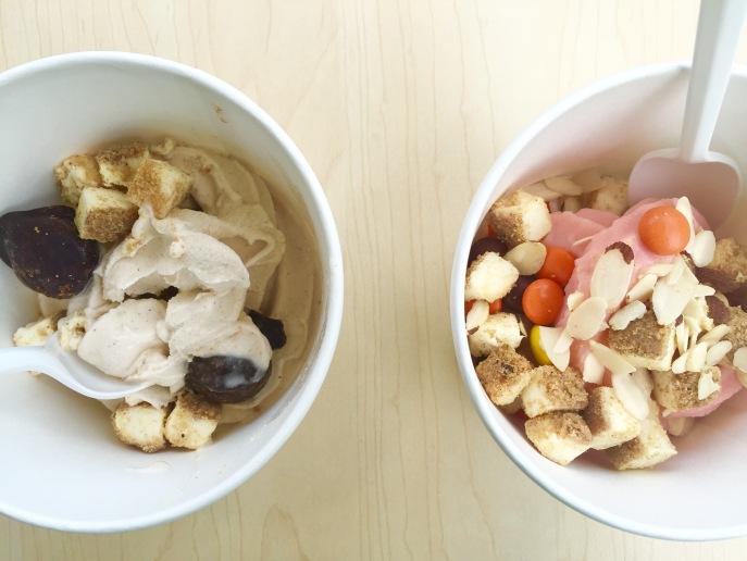 good frozen yogurt asheville nc