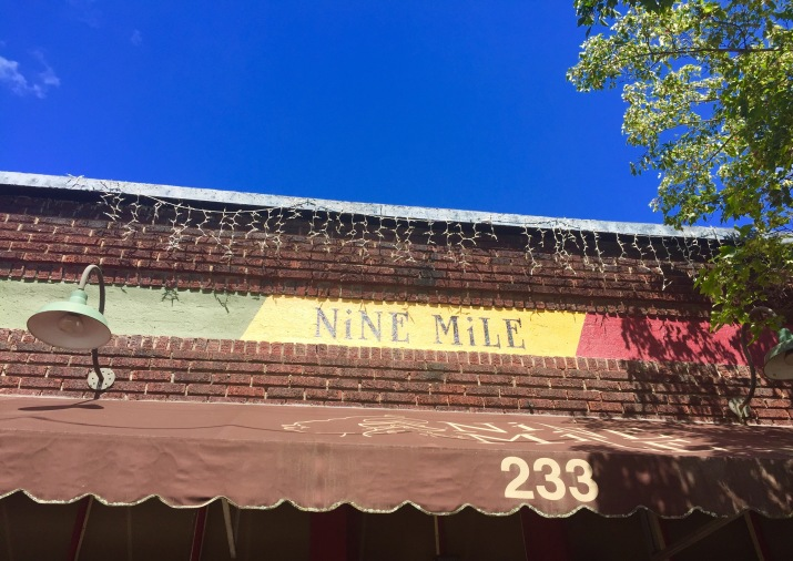 Nine Mile Asheville best ethnic food